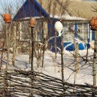 Дача зимой :: vcherkun