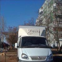 Булка на колёсах :: Нина Корешкова