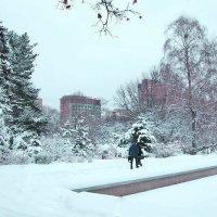 Зимний день :: Nikolay Monahov