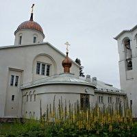 Спасо-Преображенский собор со Звонницей :: Елена Павлова (Смолова)