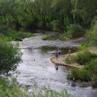 река Сердоба :: Юрий Рачек
