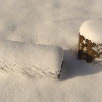 Зима в саду. :: Елена Дёмина