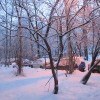 зима в городе :: Елена