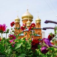 Собор святой Троицы :: Дмитрий