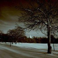 Зима. :: actualis
