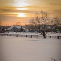 Сельское утро :: Алексей Масалов