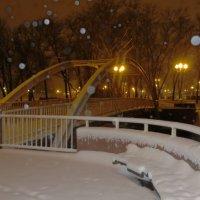 Снегопад, снегопад... :: Ирина Олехнович