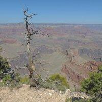 На каньоне :: Алексей Меринов