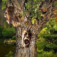 Человек-дерево :: Алексей Яшин