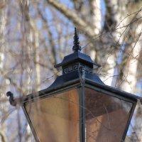 Старый фонарь... :: Tatiana Markova