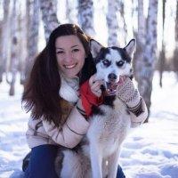 Фотосессия с Хаски :: Лора Плотникова