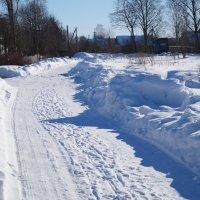 Зима . :: Александр