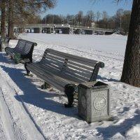 В зимнем парке. :: ТАТЬЯНА (tatik)