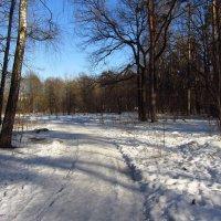 Img_9619 :: Андрей Лукьянов