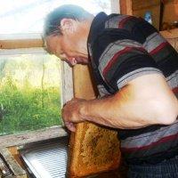 Пчеловод :: Mary Коллар