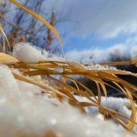 Снежинки :: Вера Андреева