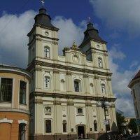 Кафедральный  собор  Святого  Воскресения  в  Ивано  -  Франковске :: Андрей  Васильевич Коляскин