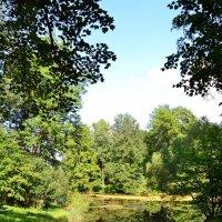 Есть графском парке черный пруд... :: Ольга