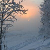 В туманной мгле :: Ольга