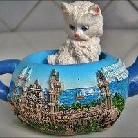 Котёнок в чайнике :: Нина Корешкова