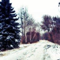 ..Снился мне холод и снился жар.. :: Ирина Сивовол