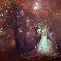 Осенний лес.Пара :: Svetlana Zavsegolova-Haritonova