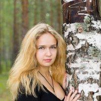 В лесу :: Евгений Томеев