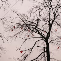 Дерево любви :: Наталья Cаруханова