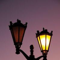 Вечернее освещение :: Андрей Куприянов