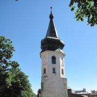 Выборг. Башня ратуши :: Николай