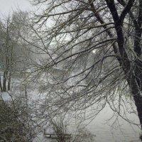 Ночью шёл снег :: Николай Филоненко