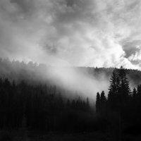 там за туманами... :: Лара Leila