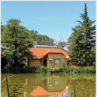 Озеро Дивное :: cool.miki.s