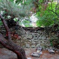 Древние стены :: Ирина Фирсова