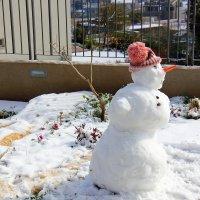 снеговик :: vasya-starik Старик