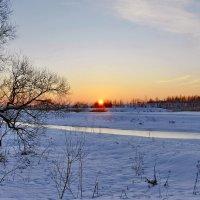 Зимнее  солнышко. :: Валера39 Василевский.