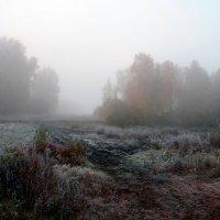туманный осенний рассвет :: Татьяна Малинина