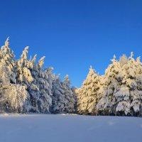 2 января - восход :: Галина