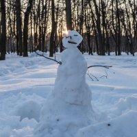 Не так страшен Снежный Человек :: игорь щелкалин