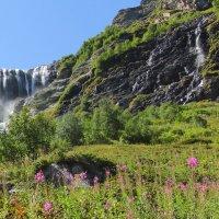 Цветочная поляна у Софийского водопада :: Vladimir 070549