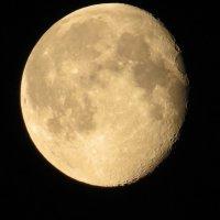 Луна, луна. :: Вера Щукина
