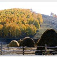 осенний пейзаж :: Виктор Новоженин