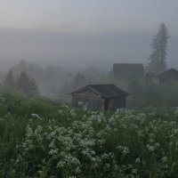 """Из серии """" Туманные хроники."""" :: mike95"""