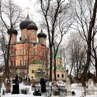 Донской монастырь :: Игорь Егоров
