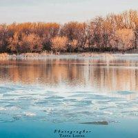 лёд тронулся :: Tanya Larina