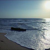 Морской покой :: Swetlana V