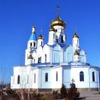Шахтинский Кафедральный собор Покрова Богородицы :: Владимир Болдырев