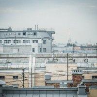 мой город мостов :: Ольга Чубан