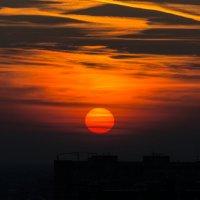 Закатное солнце :: Никита Шпаченко