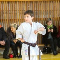 Соревнование по каратэ Иваново 21 февраля 2015 год :: Finist_4 Ivanov